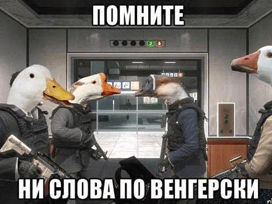 Суд арестовал партию товаров, которую пытались ввезти в Украину под видом гуманитарной помощи - Цензор.НЕТ 1778