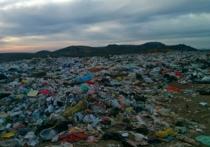 Предприниматели получат свою долю мусора