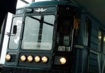Как спасали котенка: машиниста метро наградят за необычный подвиг