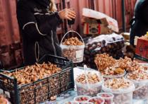 Грибная пора в Татарстане: не уверен – не собирай