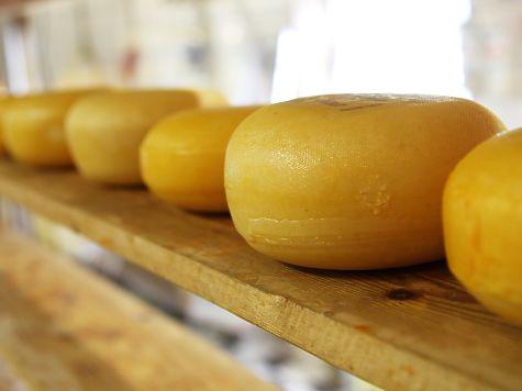 Татарстанское УФАС разберется в«сырном деле»