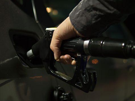 Транспорт Казани планируют перевести нагазомоторное горючее