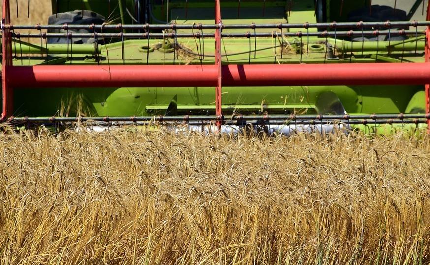 ВТатарстане намолотили неменее 2,8 млн. тонн зерна