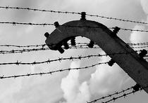 Ошибка Схетины: Освенцим освободил еврей