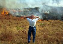 В Подмосковье назвали причины пожаров у дорог: трава высохла аномально рано